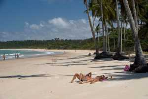 Sunbathers at the beach in Trancoso. - Brésil-Cosmic Travel