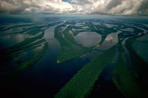 Aerial of Arquipélago das Anavilhanas on the Río Negro, in Brazil, close to Manaus and the Amazon River - Brésil-Cosmic Travel