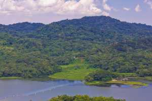 Gamboa - river and rain forest along Panama Canal zone. - Panama-Cosmic Travel