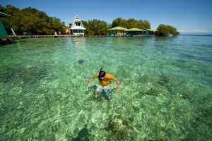 Snorkeling in the clear water of the small Caribbean island of Coral Key, Bocas del Toro. - Panama-Cosmic Travel