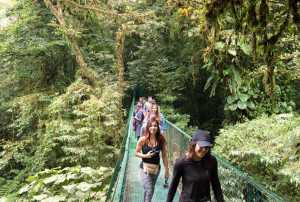 People on the Canopy bridges walk, Monteverde Cloud Forest reserve - Costa Rica-Cosmic Travel