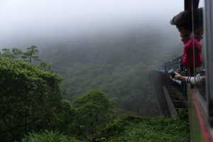 A tour through the cloud forest, with the Serra Verde Express from Curitiba to Morretes. - Brésil-Cosmic Travel