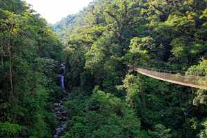 Canopy Tree Trek, Scenery with Forest and Waterfall, Boquete. - Panama-Cosmic Travel